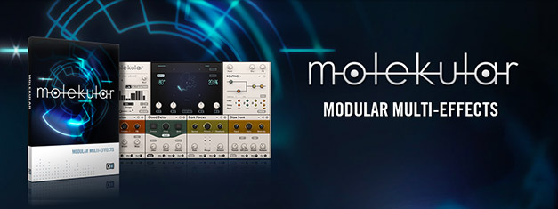 http://www.protootr.com/wordpress-protootr/wp-content/uploads/native-instruments-molekular-modulair-effects.jpg